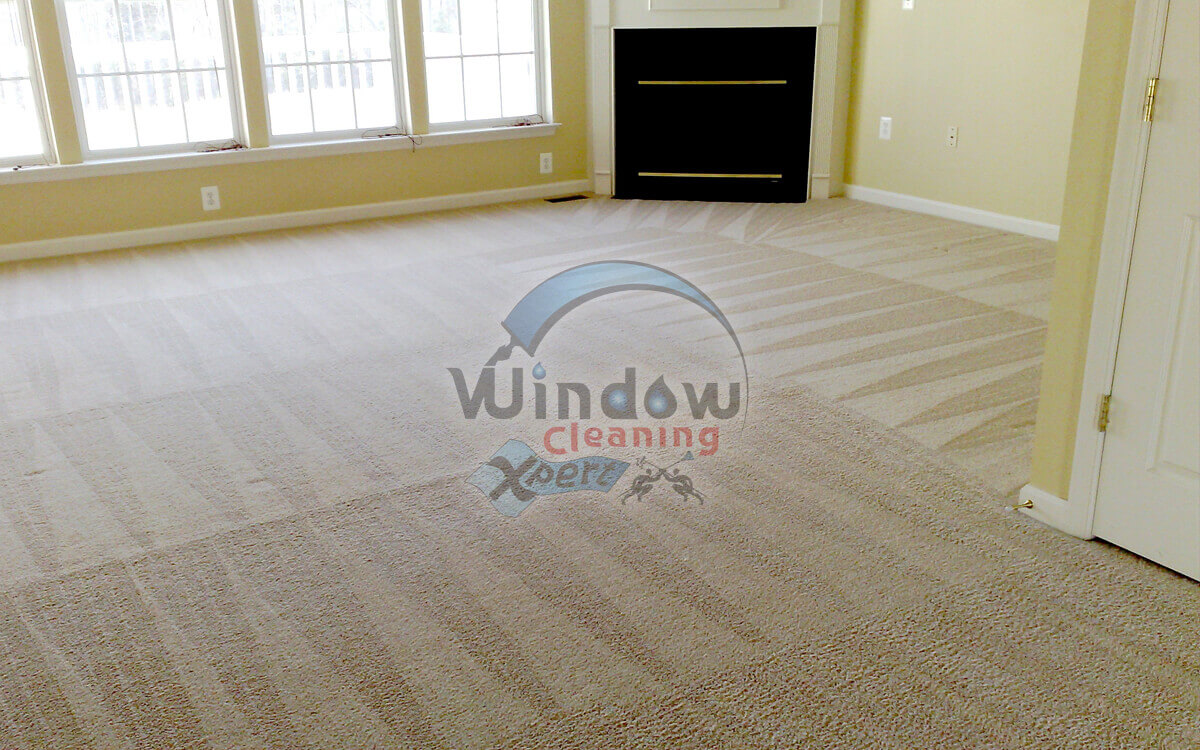 carpet cleaner leicester